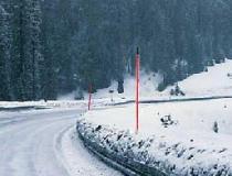 Snow Pole - Flag