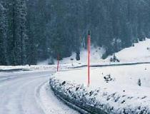 Snow Poles - With Reflective